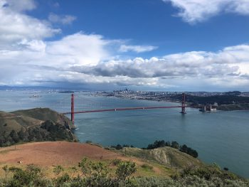 Muir Woods,Painted Ladies,Golden Gate Bridge,Alcatraz